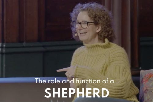 The Role and Function of the Shepherd